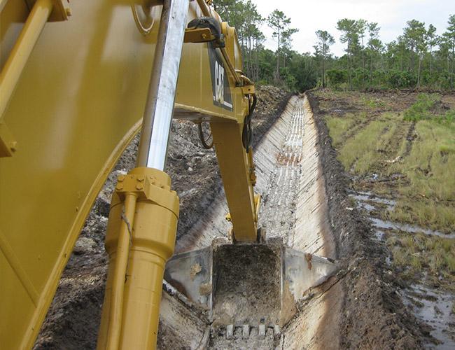 Belize Excavation